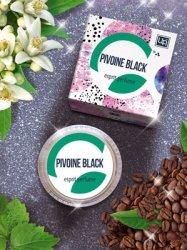 Pivoine black